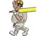 Ipplepen Cricket Club