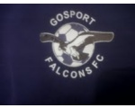 Gosport Falcons Black FC U11's