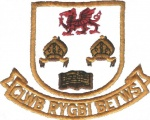 Clwb Rygbi Betws RFC