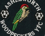 Ashleworth Woodpeckers y.f.c
