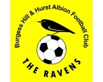 Burgess Hill and Hurst Albion FC