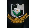 Pill Harriers RFC