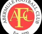 Abermule A.F.C