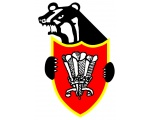 Pontyclun RFC