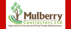 Mulberry Contractors