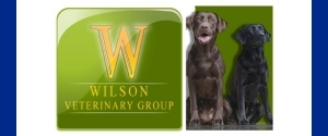 Wilson Veterinary Group