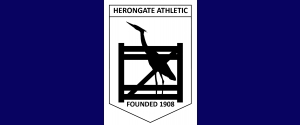 Herongate Athletic YFC