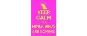 Penallta Miner Birds