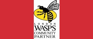 Wasps Community Partner