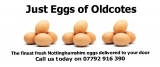 Just Eggs of Oldcotes