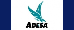 Adesa Auctions