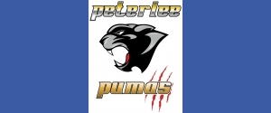Peterlee Pumas 