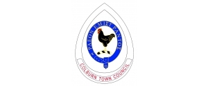 Colburn Town Council