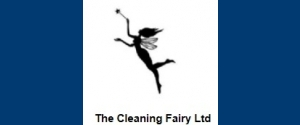 The Cleaning Fairy