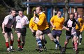 Golden Oldies Perthshire RFC still