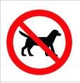NO DOGS ALLOWED AT ST. JOHNS ROAD PITCH