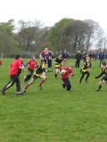 Waid Pirates (P6/7) at Carnoustie Tournament still