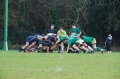 OMWRFC AXV v London Irish Nomads still