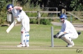 Maldon Cricket Week - Tuesday. still