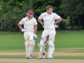 Coggeshall Town Cricket Club Images still