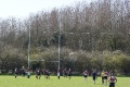 Dunstublians RFC 19 - 21 Wellingborough RFC still
