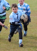 U8s Devon Tour still