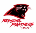 Red Panther Head Logo