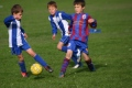 under 9's team B v Swiss Valley still
