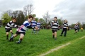 Perth Rugby Festival, May 2013. P5's.  All pics by Richard Norton still