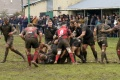 Dings 16 - 14 Redruth still