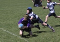 Uckfield RFC Festival of Mini Rugby----A selection of Images... Sunday 21st April 2013 still