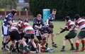 U15s TMV Hawks - Waterloo game2 Southport Tournament still