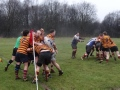 Dilli 16/2/13  1st and 2nd XV's still