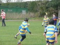 U11 Leamington Festival v Leamington 6 still