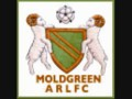 Moldgreen under 10s 2010 