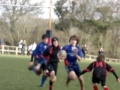 U13 Totnes vs Tavistock - video of try  still